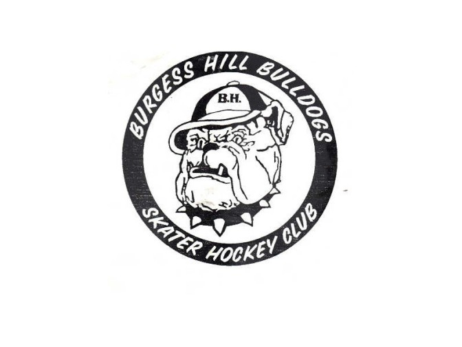 From the Archives: Bulldogs Skater Hockey